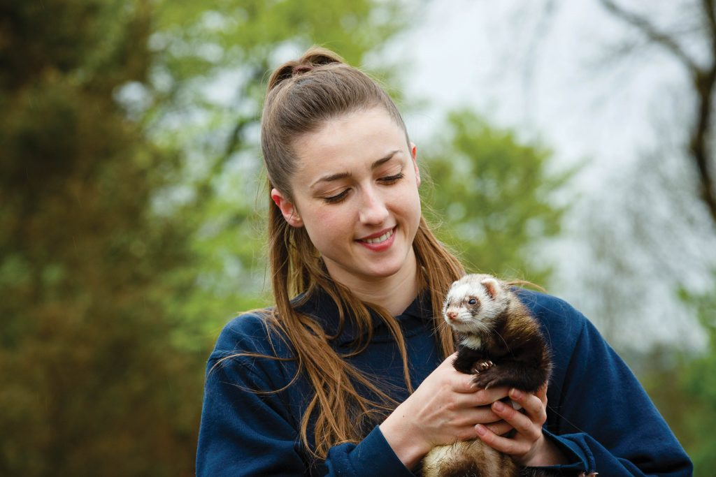 Student smiling while holding a ferret