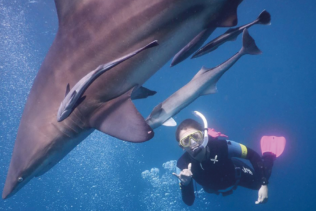 Person swimming underwater next to sharks