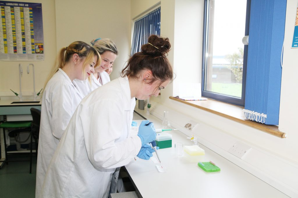 Three students during laboratory practice