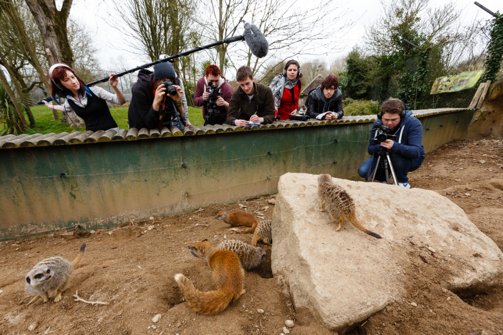 Group of students filming animals in zoo